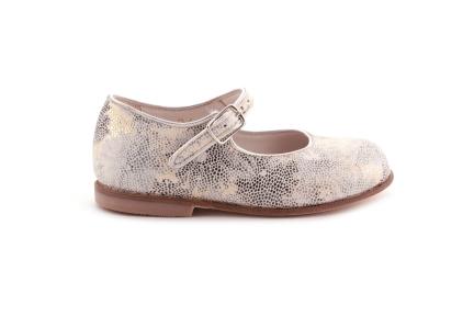 Schoen gesp multi goud en zilver